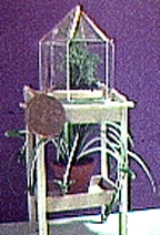 Dollhouse Miniature Kit by Roz - TERRARIUM