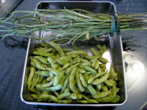 Edamame and their stalks